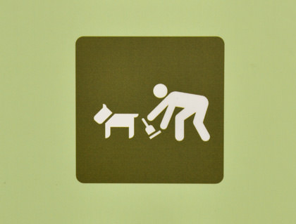 Icon photo of a man behind a dog with... something.