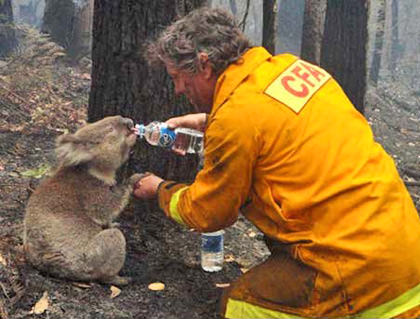 Sam gets a drink from firefighter David Tree