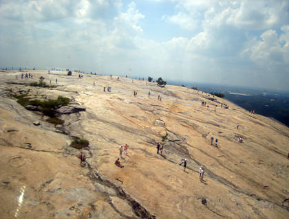 Stone Mountain People Ants