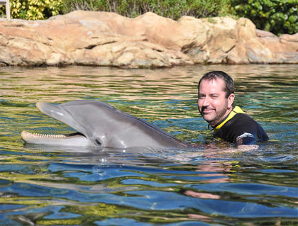 Hanging with a Dolphin