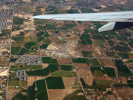 TT Wing Boise