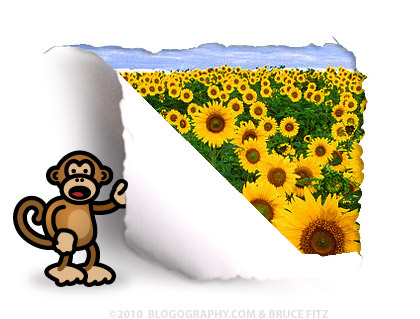 DAVETOON: Bad Monkey Reveals a Sunflowers Photo