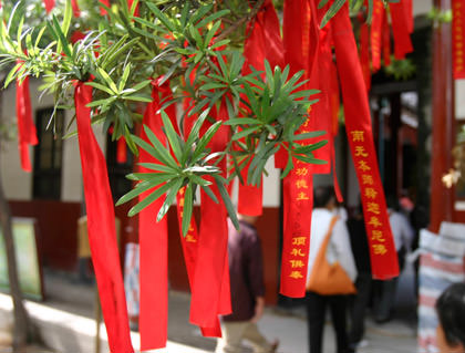 Red Ribbons of a Tree Branch in China