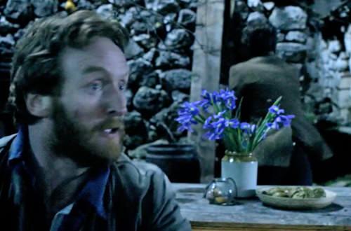 Dr. Who Van Gogh's Irises