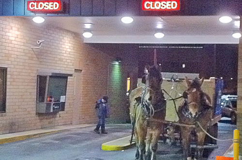 Horse and Buggy at a Drive-Thru