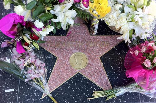 Elizabeth Taylor Star