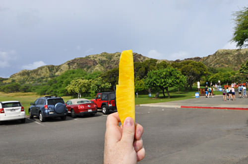 Pineapple Spear at Diamond Head