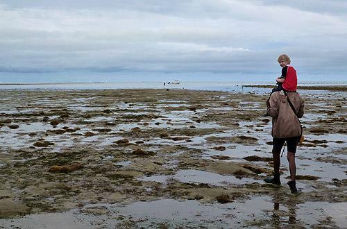 Bula Snorkel Mud Flats