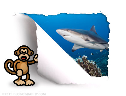 DAVETOON: Bad Monkey and a Shark