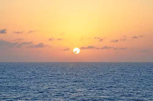 Sunset View