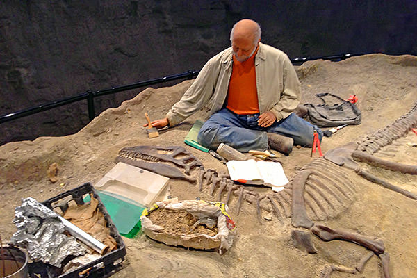 Creation Museum Science Dig