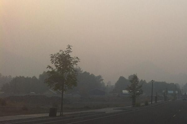 Smokey Days