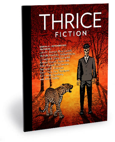 Thrice Fiction Issue No. 6