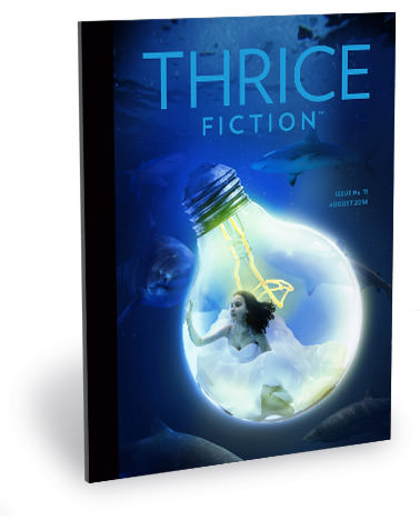 THRICE Fiction No. 11