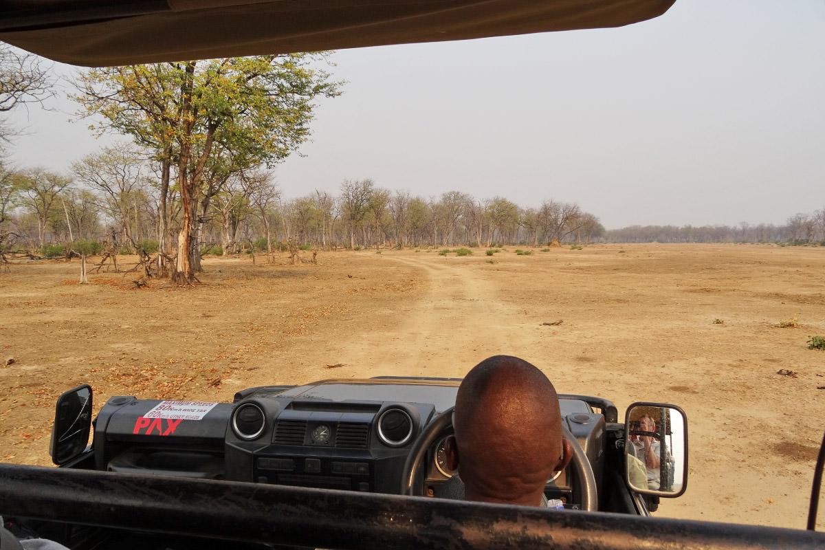 Drive to Mana Pools and Ruckomechi Camp