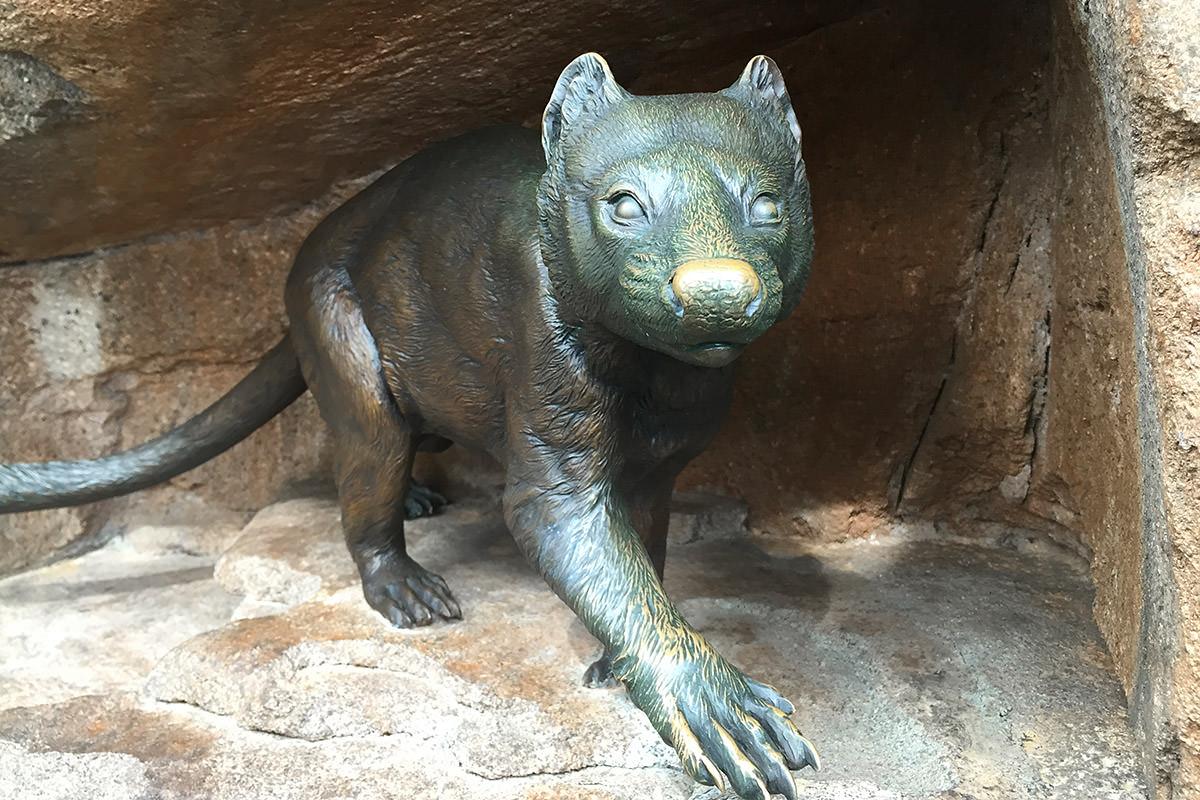 San Diego Zoo Australian Outback Tasmanian Devil Statue