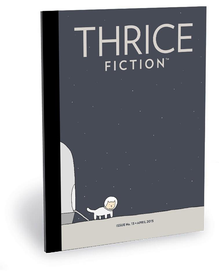 THRICE Fiction No. 13