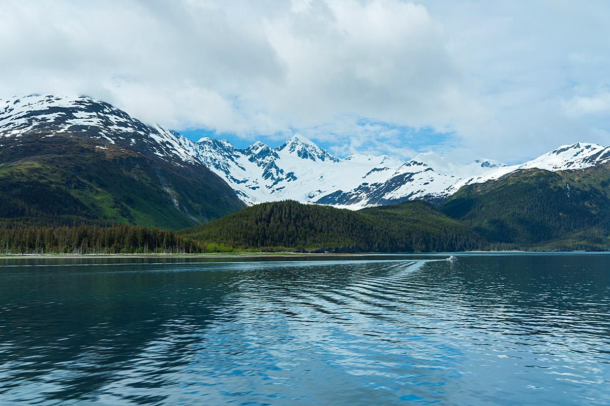 Glacier Cruise Alaska Prince William Sound