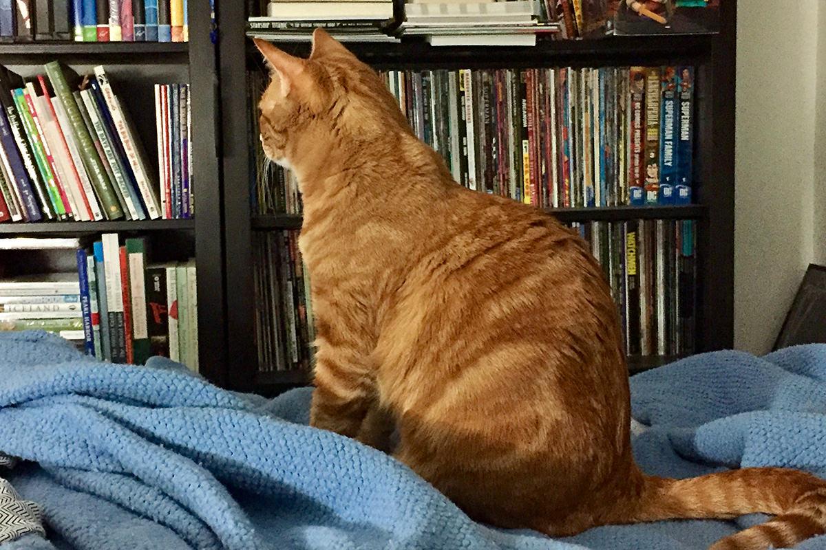 Jenny Watches TV!