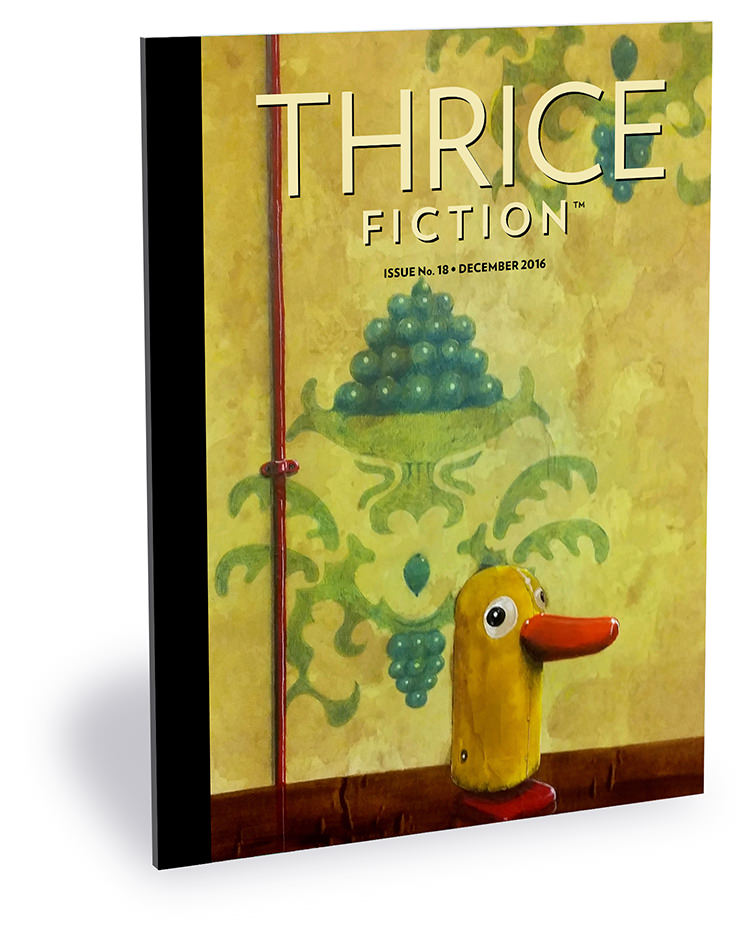 Thrice Fiction Magazine Issue No. 18