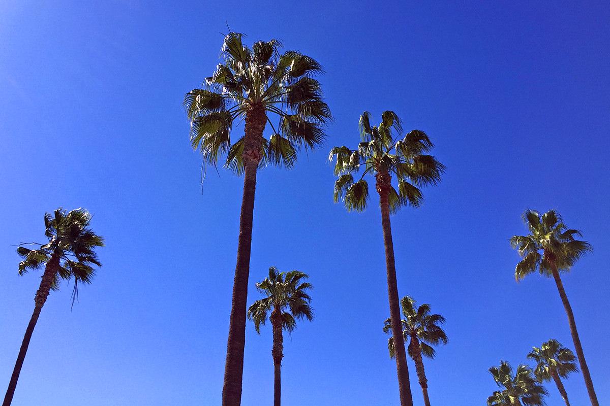 Cali Weather