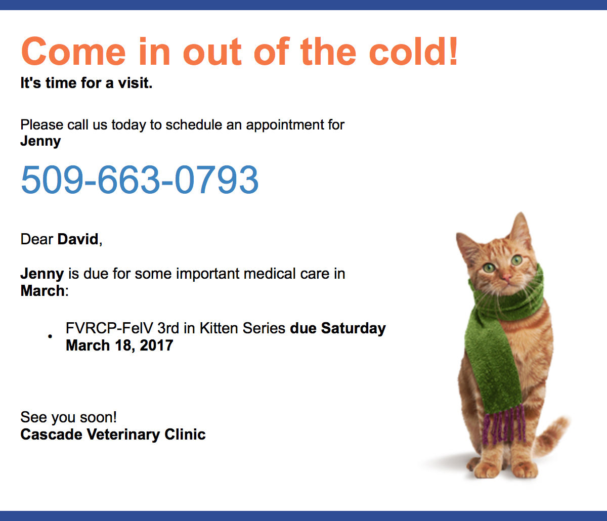 Jenny Needs a Vet Appointment for her FelV Vaccination!